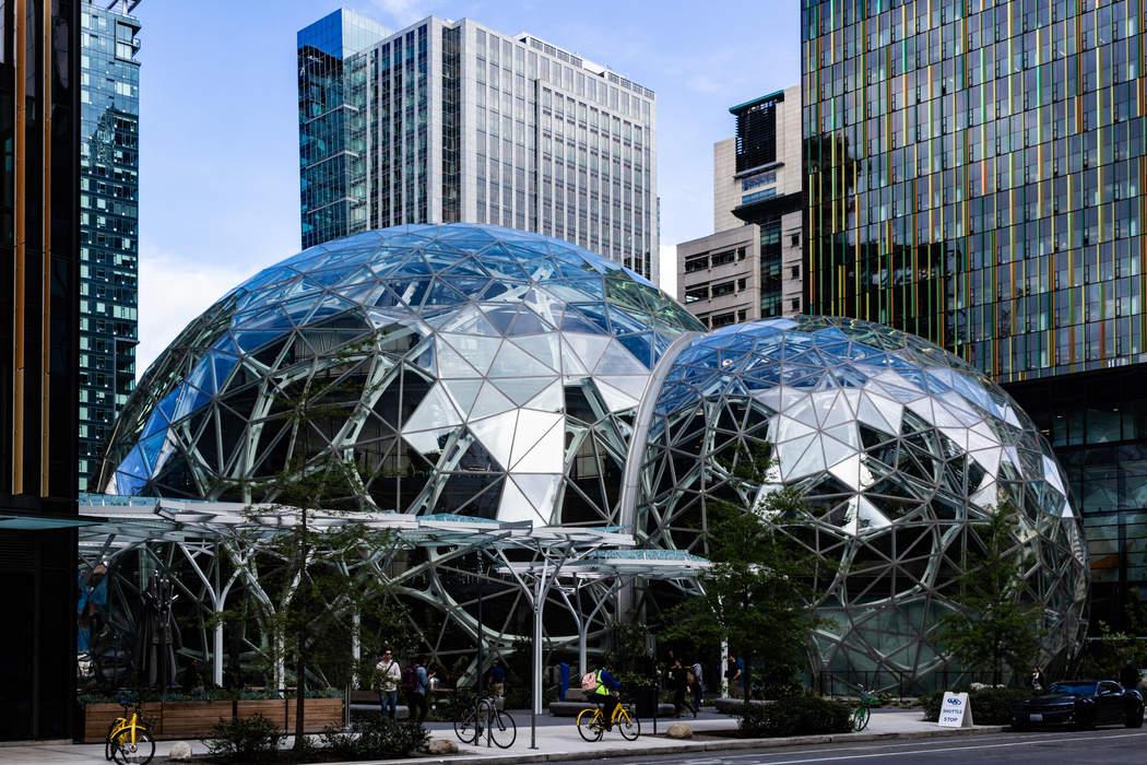 Amazon (company): American technology and e-commerce company