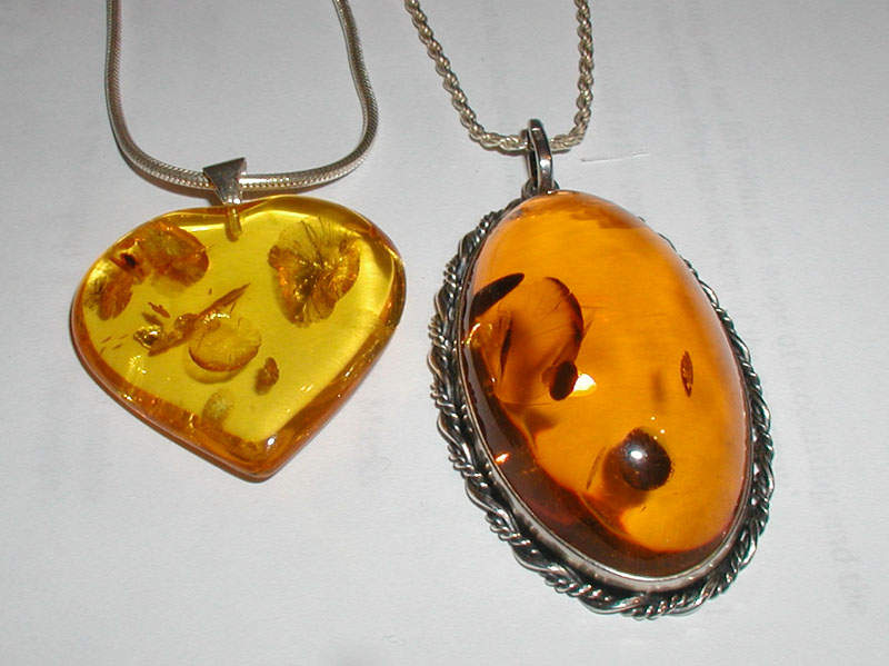 Amber: Fossilized tree resin