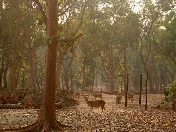 Jhargram: City in West Bengal, India