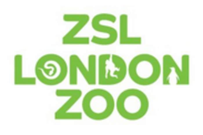 London Zoo: World's oldest scientific zoo in London