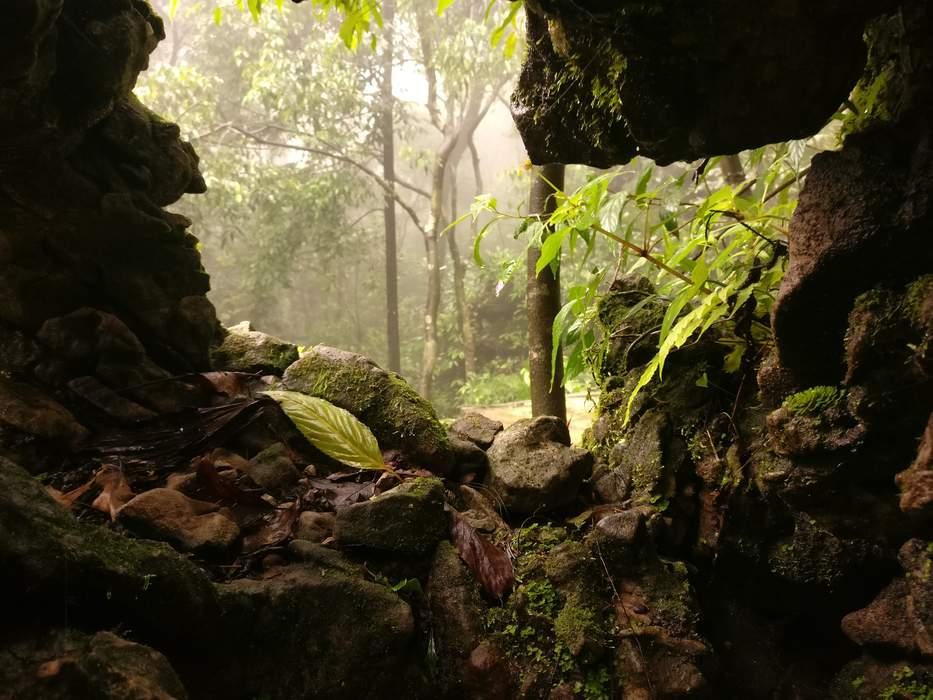 Meghalaya: State in north-eastern India