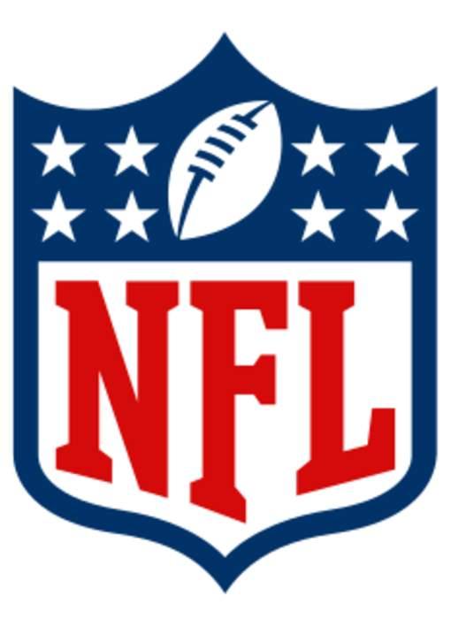 National Football League: Professional American football league