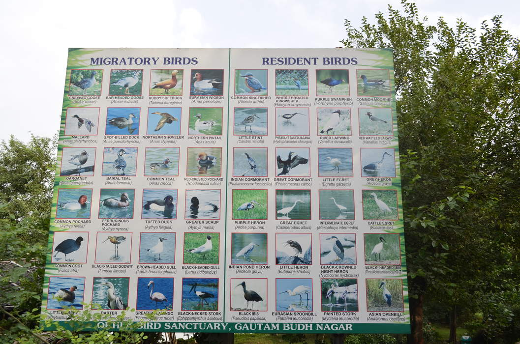 Noida: City in Uttar Pradesh, India