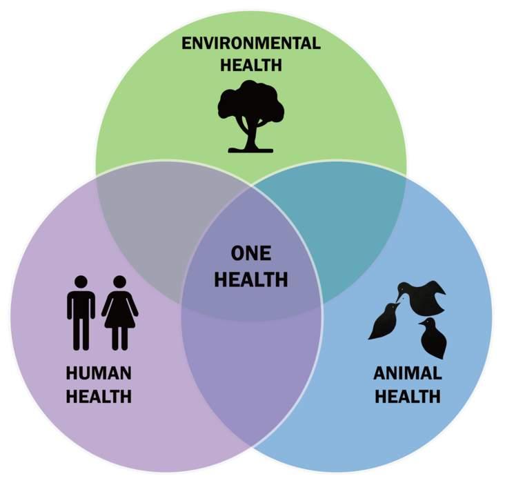 One Health: