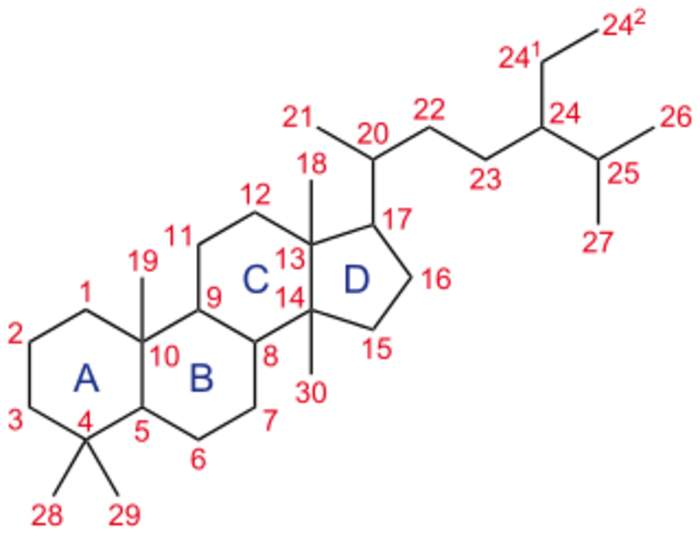 Steroid: Any organic compound having sterane as a core structure