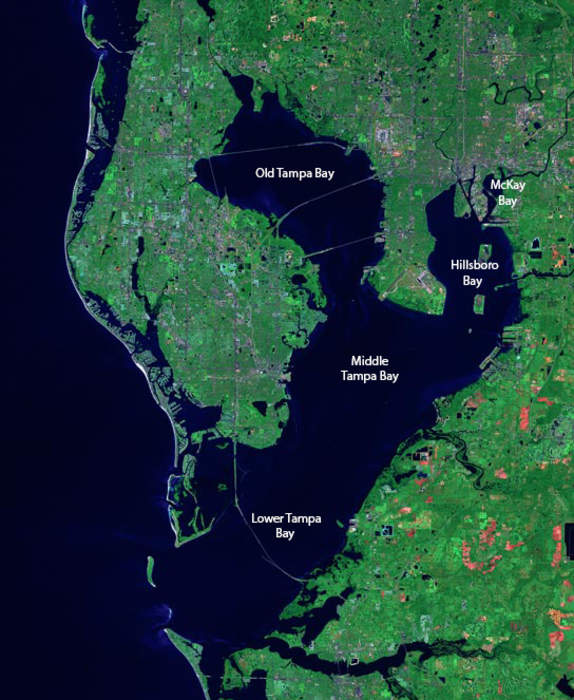 Tampa Bay: Estuary and natural harbor in Florida, off the Gulf of Mexico