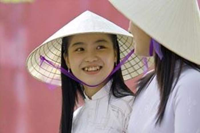 Vietnamese people: Southeast Asian ethnic group