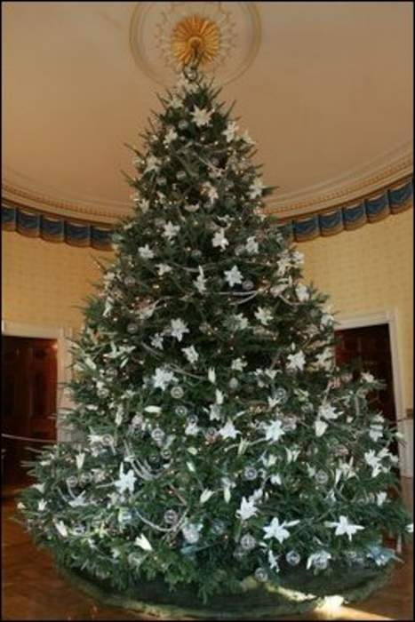 White House Christmas tree: Christmas tree inside the White House in Washington, DC, United States